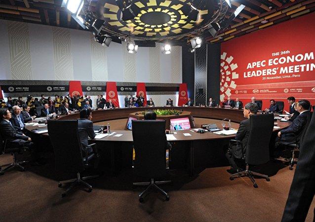 利马宣言:亚太经合组织领导人谴责恐怖主义 呼吁继续交换反恐经验