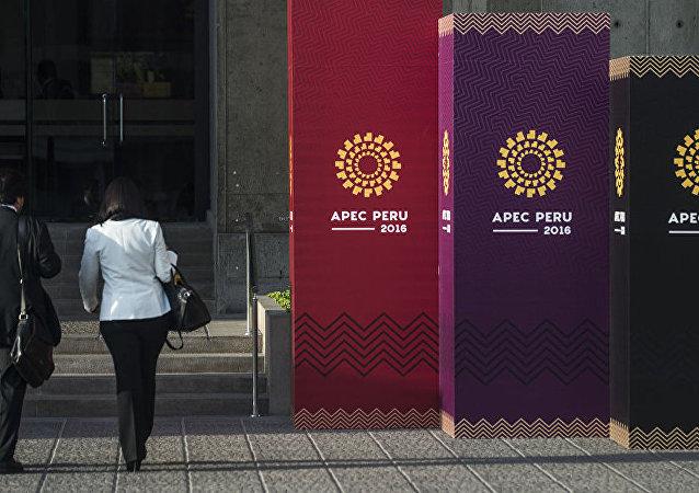 专家:中俄在APEC框架内的合作议题非常广泛