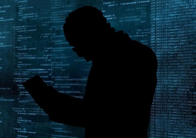 俄联邦安全会议副秘书:美国去年11月曾就民主党服务器被入侵质询俄罗斯