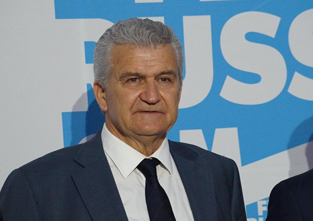 希腊总理与俄合作问题特别顾问迪米特里奥斯•韦拉尼斯