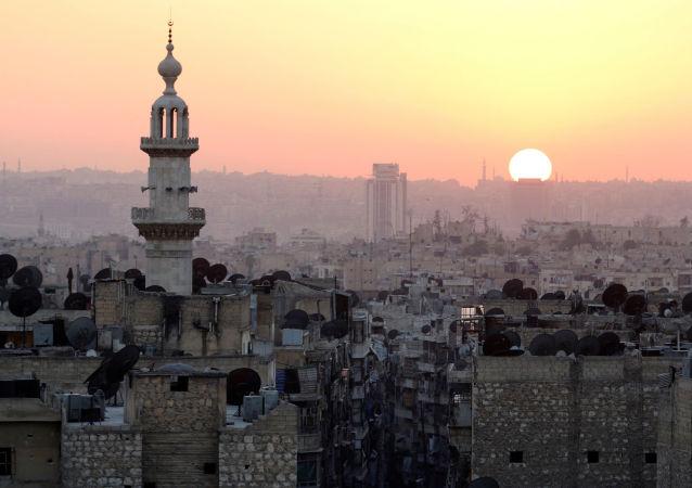 俄国防部:在阿勒颇被解放地区销毁1300多个爆炸物