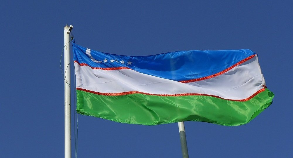 乌兹别克斯坦议会承诺在新政府执政情况下保持外交政策方向