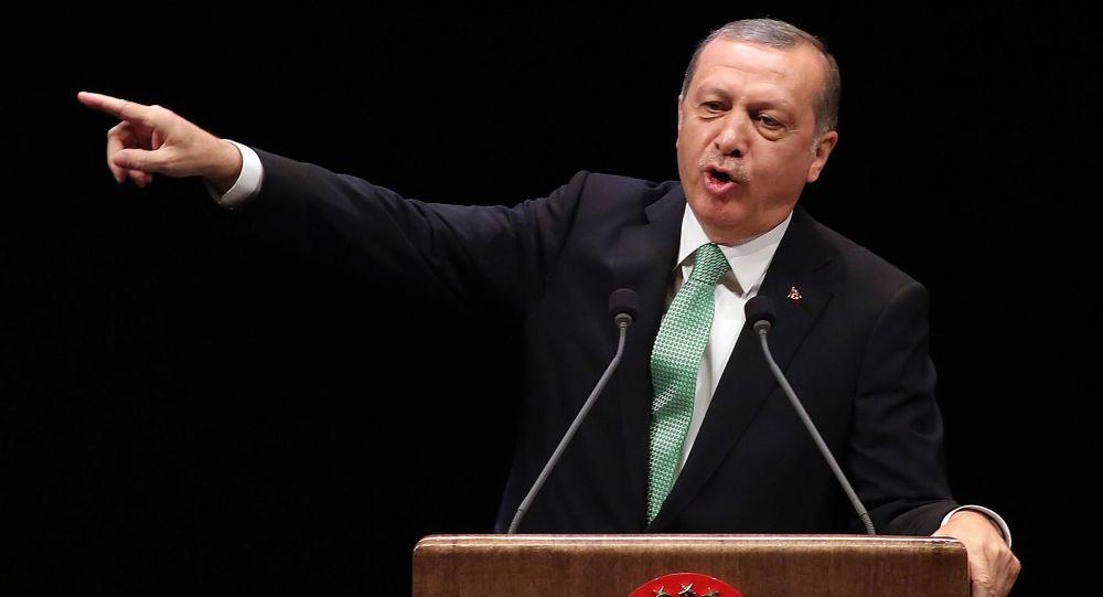 叙外交部:土总统有关推翻阿萨德的言论证明土耳其侵略叙利亚领土
