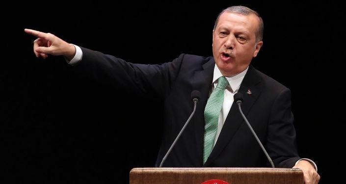 土耳其总统埃尔多安