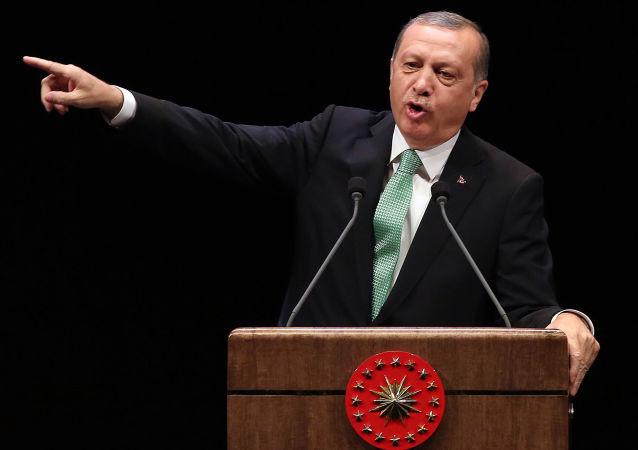 中国专家:土耳其总统的很多言论实际上是向西方要价的筹码