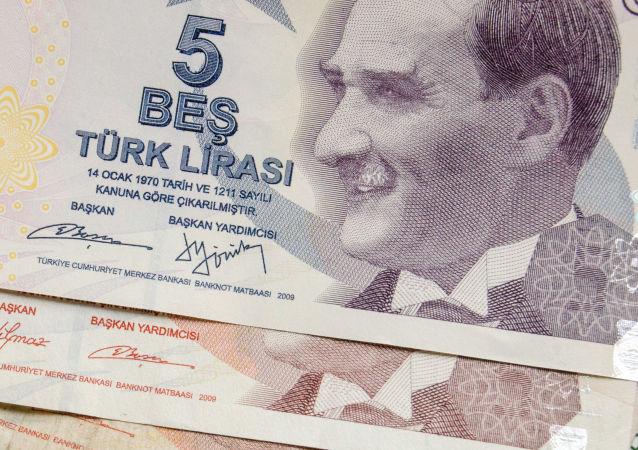 土耳其总统称已提议俄罗斯在双边贸易中改用本币结算