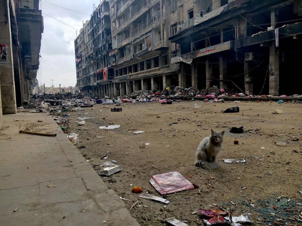 阿勒颇:战前与战后