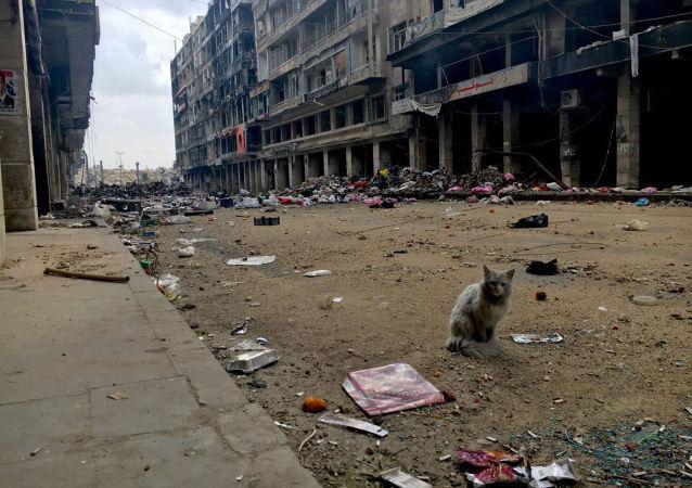 俄驻叙停火协调中心:过去24小时中疏散阿勒颇居民1.3万多人