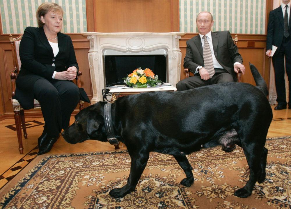 德国总理安格拉•默克尔与俄罗斯总统普京