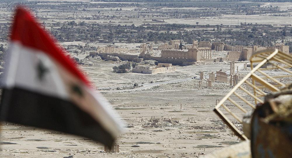 媒体:俄土协商建议叙冲突各方29日零点起停火