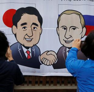 民调:大多数日本民众积极评价普京与安倍晋三的会面结果