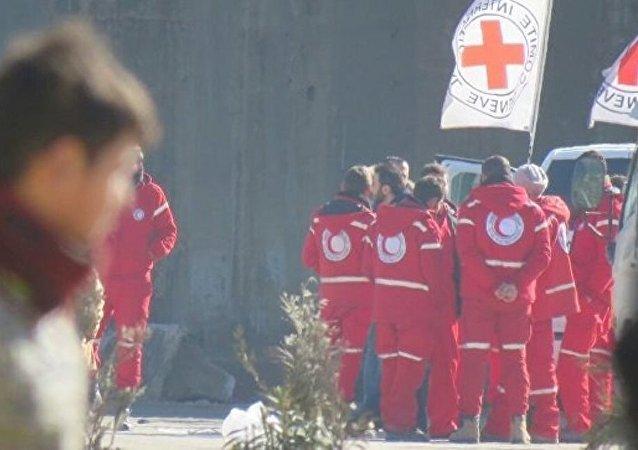 红新月会工作人员:首批车队从阿勒颇疏散约1500人