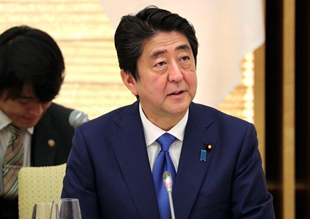 日首相:日本期望与俄中及其他国家就朝鲜问题进行互动