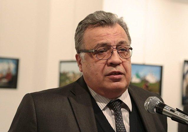Посол РФ в Турции