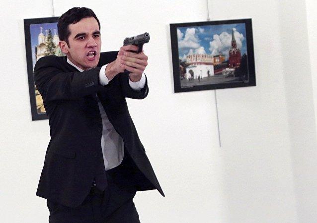 俄驻土大使遇袭后身亡