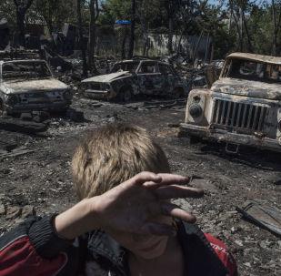 欧安组织特别监督团:2017年年初至今顿巴斯平民伤亡人数不少于350人