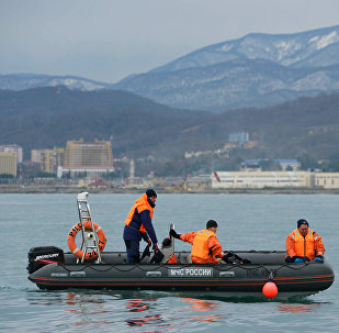 俄国防部:已在图-154坠毁地区打捞起15具尸体