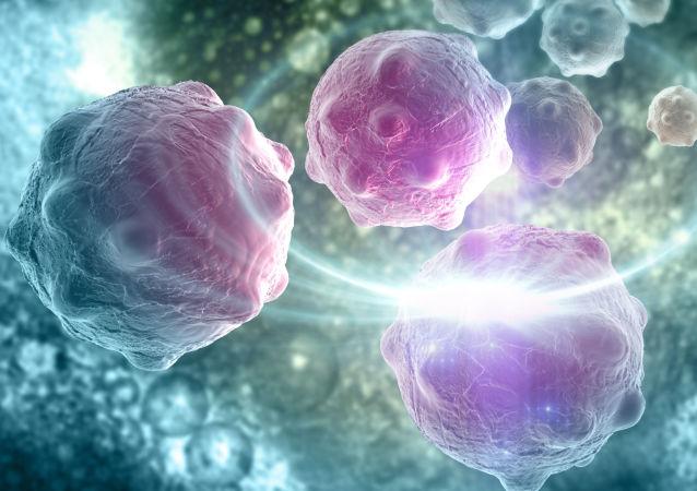 德州科学家发明一种能够在10秒钟内检测出癌细胞的仪器