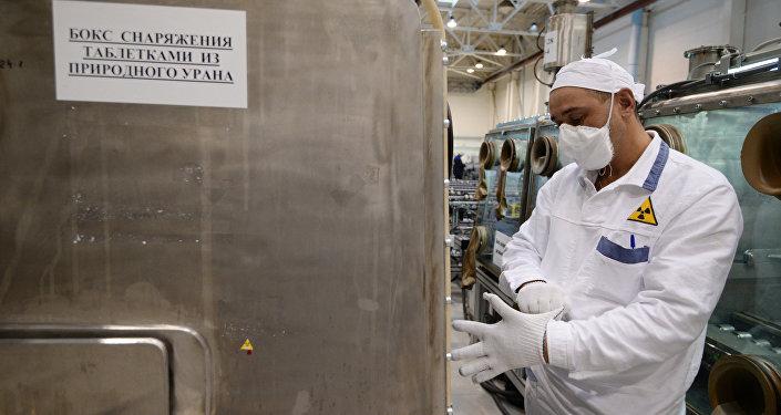 """俄罗斯制造出用于研发""""未来反应堆""""的独特核燃料"""