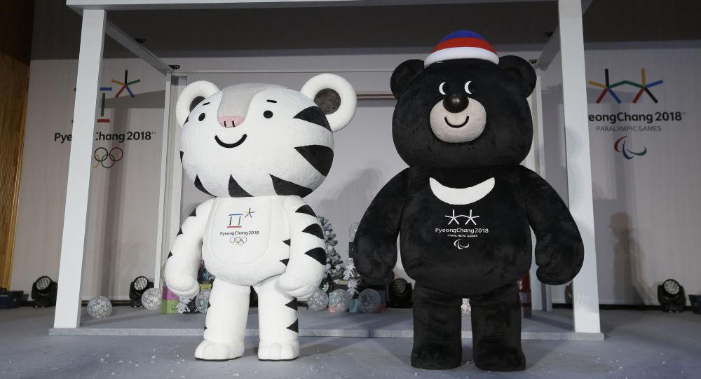 《商报》表示,他呼吁彻底取消俄罗斯参加2018年平昌冬季奥运会和2020