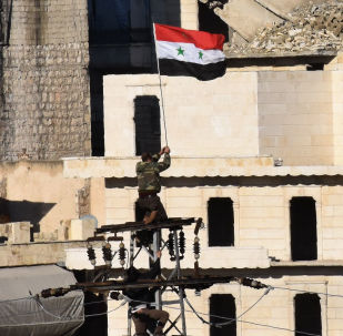 消息人士:敘政府軍在阿勒頗省消滅三名「伊斯蘭國」頭目