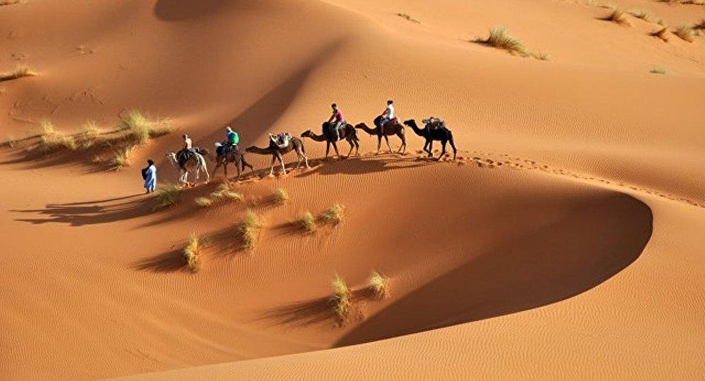 媒体:蜡助科学家解开撒哈拉干旱之谜