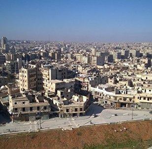 媒體:敘利亞軍隊從「伊斯蘭國」手中奪回對阿勒頗省東部機場的控制