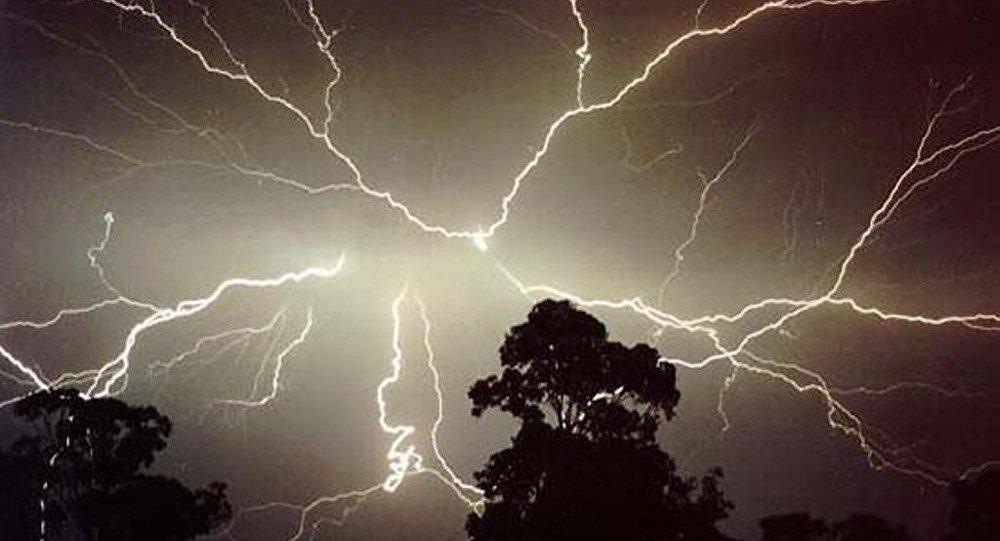 孟加拉国政府下令植树造林 让人们免遭闪电之灾