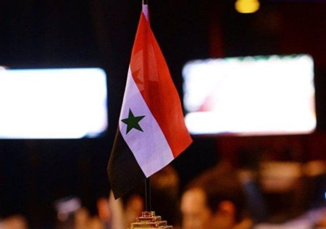 叙利亚立宪委员会会议预计于8月召开