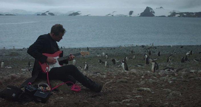 丹麦摇滚乐手在南极洲为企鹅演出一场