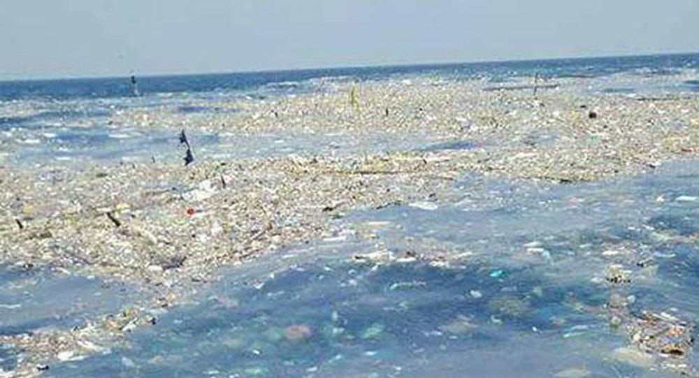 """媒体:泰国海岸发现的""""垃圾岛""""神秘消失"""