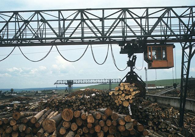 俄远东木材出口量2016年增长16%