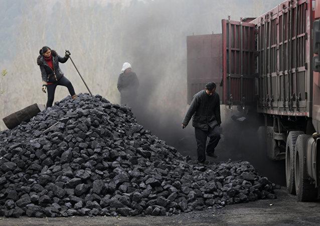 乌克兰总统与美国领导层讨论从美进口煤炭问题