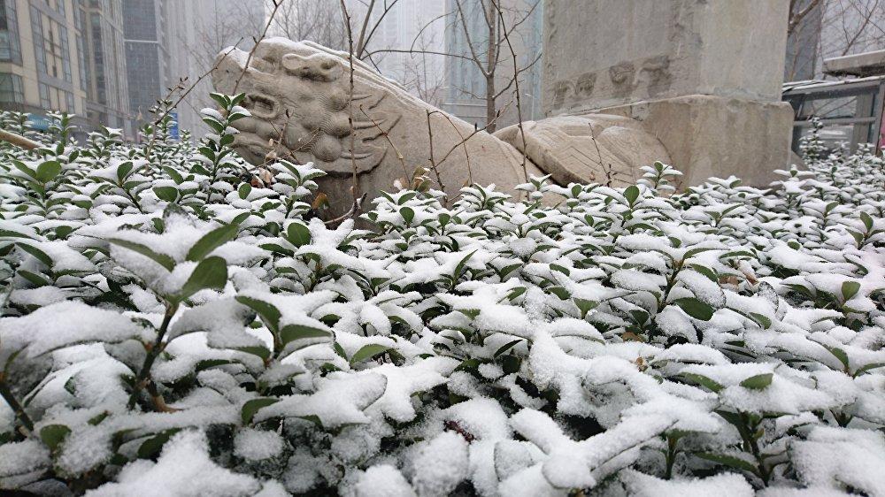 北京迎来一年来最大一场降雪,这对北京的春天来说实属反常。