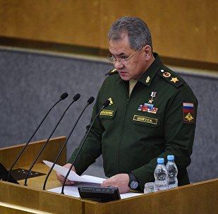 绍伊古:俄罗斯加强在中亚地区的地位