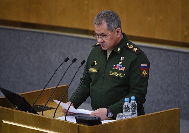 俄防长:俄国防部拥有叙利亚境内何人持有化学武器的消息