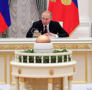 普京:俄羅斯將繼續鞏固自己的武裝力量