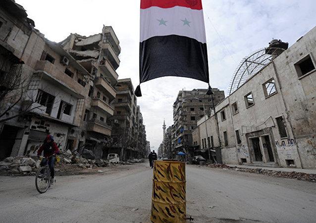 """叙军消息:政府军将""""伊斯兰国""""武装分子从多个村落赶出"""