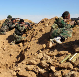 俄驻叙大使:叙政府目前控制叙利亚全国约35%的领土