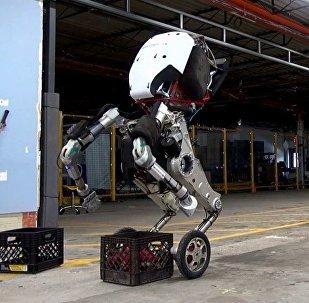"""波士顿动力新款机器人脚踩""""风火轮""""前来报到"""