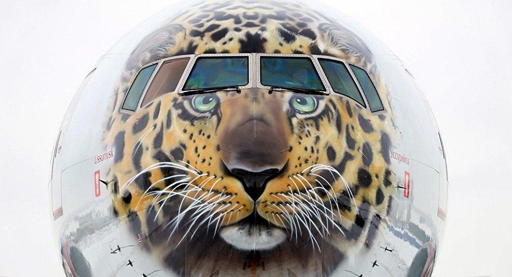 俄罗斯政府提议为远东地区建立航空公司