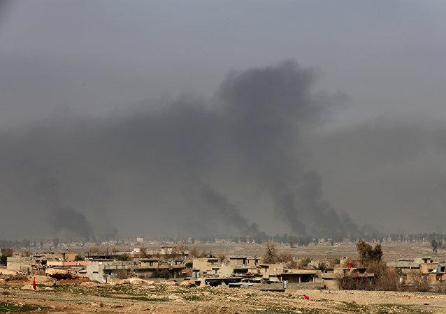 """伊军已从""""伊斯兰国""""手中解放了西摩苏尔1/3以上的土地"""
