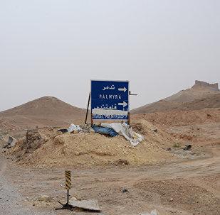 叙利亚军队在巴尔米拉