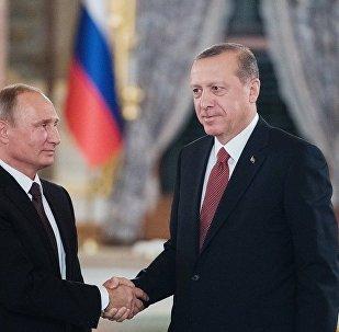 拉夫罗夫:俄罗斯与土耳其两国总统将就叙利亚问题进行讨论