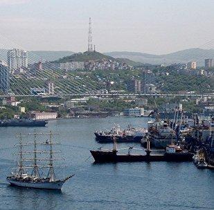 普京签署有关在俄远东多地实行电子签证的法律
