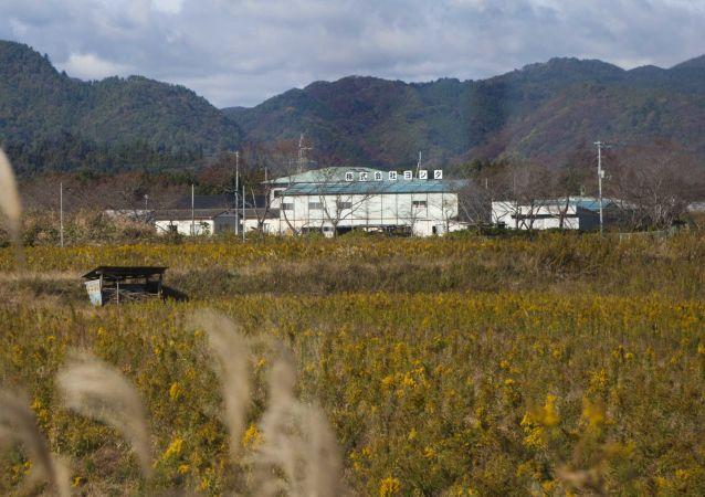日本福岛核电站隔离区50多公顷森林因火灾被烧毁