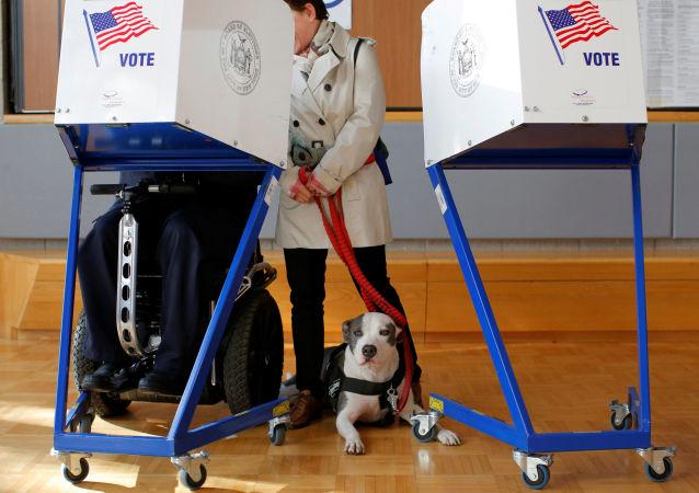 媒体:美国各州不愿向政府提供选举信息