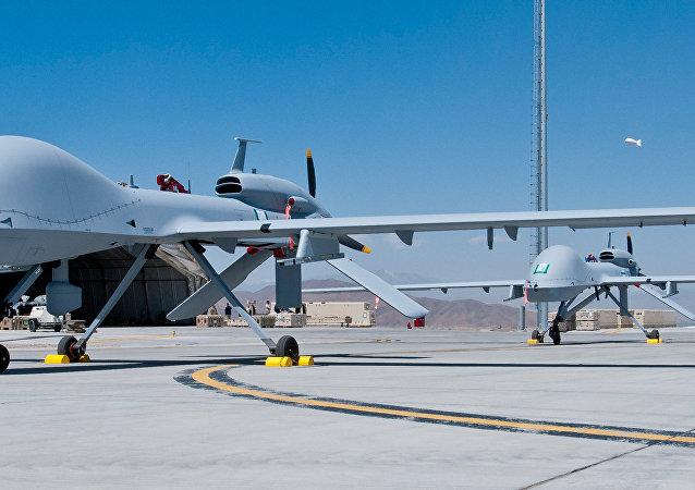 """媒体:美国计划向韩国调遣""""灰鹰""""作战无人机"""