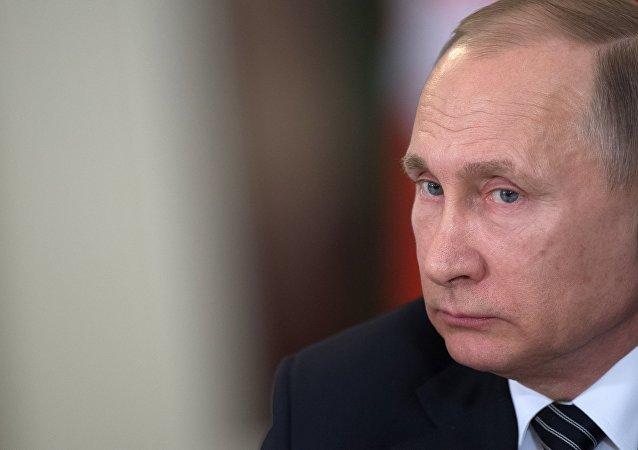 普京:俄将继续协助阿富汗摆脱恐怖主义