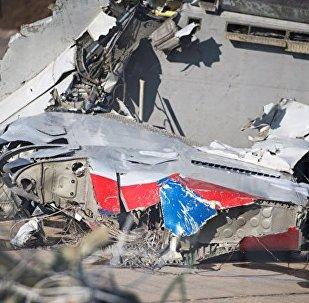 媒體:索契附近墜毀的圖-154飛行員將飛機降落到水上